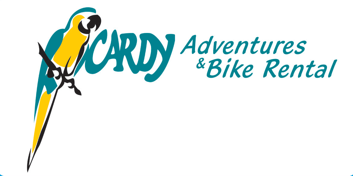 Logo Cardy Adventures (PNG)